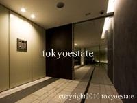 六本木 MK Art Residence(六本木エムケイアートレジデンス) 風除室