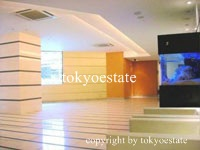 FEEL A 渋谷(フィールエー渋谷) エントランスホール