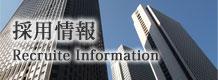 東京エステート 東京 港区 不動産 賃貸 採用情報